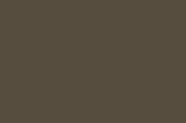 96119930_satin_alphatec-anodic-bronze