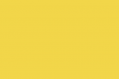 98432120_gloss_alphatec-lemon-yellow